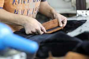 Leather Shop Covering